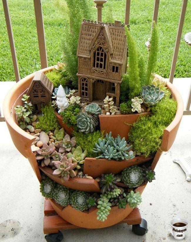 cool-broken-pot-cacti-flowers