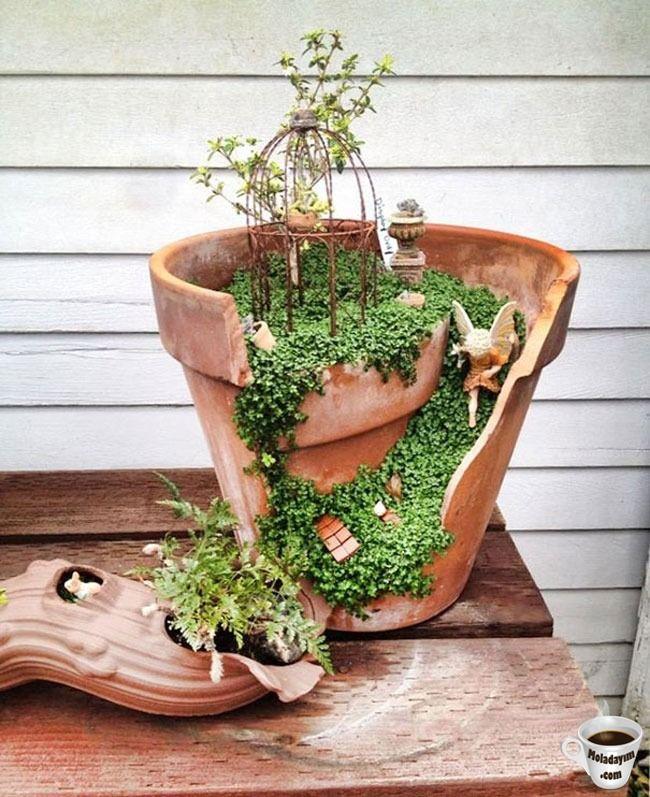 cool-broken-pot-little-garden