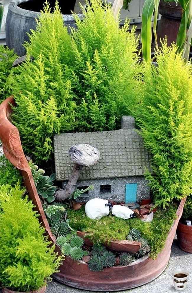 cool-broken-pot-little-house-forest