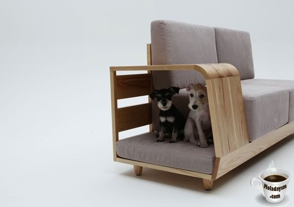 design-pet-modern-stuff-animals (1)