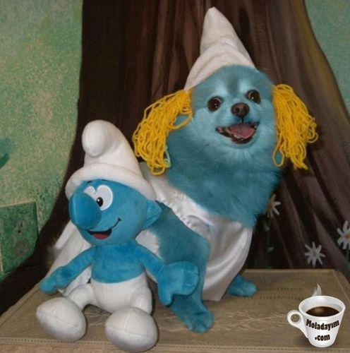funny-dog-costumes (16)