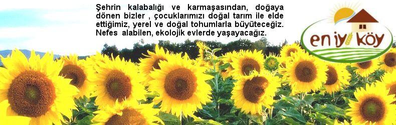 en_iyi_koy_village